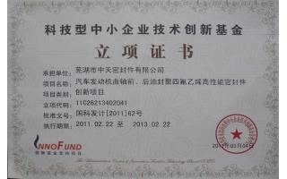 科技型中小企业技术创新基金立项证书