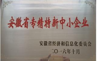 安徽省专精特新中小企业证书